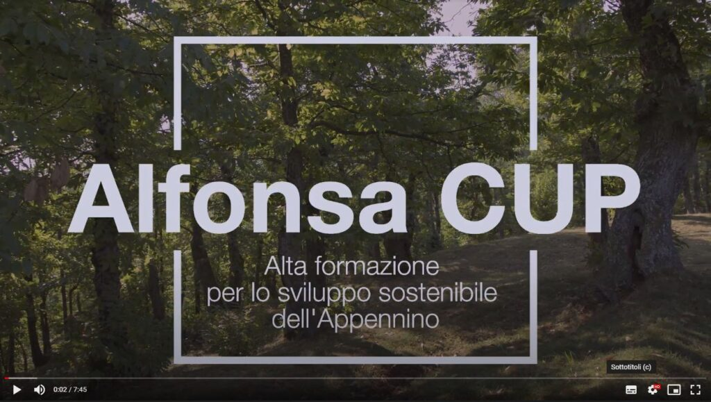 Alfonsa CUP castanicoltura
